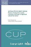Actualités de droit social : revenu d'intégration sociale, activation chômage et règlement collectif de dettes